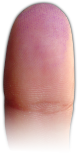 dedo voton